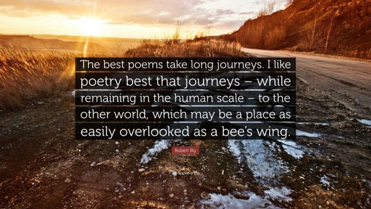 855053-Robert-Bly-Quote-The-best-poems-take-long-journeys-I-like-poetry.jpg