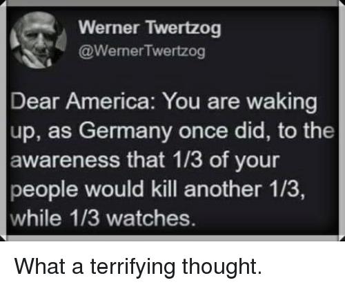 werner-twertzog-wernertwertzog-dear-america-you-are-waking-up-as-28120246.png